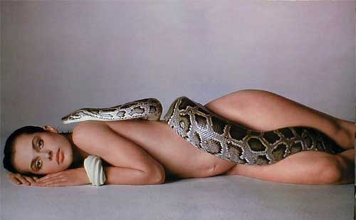 Natasha Kinski Snake Photo http://www.geekculture.com/ultimatebb/ultimatebb.php?ubb=get_topic;f=10;t=000351